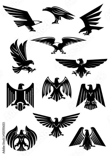 Fototapeta premium Odznaka herbowa orła lub sokoła, aquila lub jastrzębia