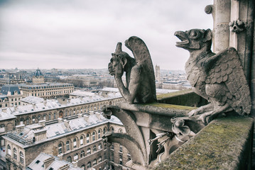 gargoyle sits on top of Notre Dame