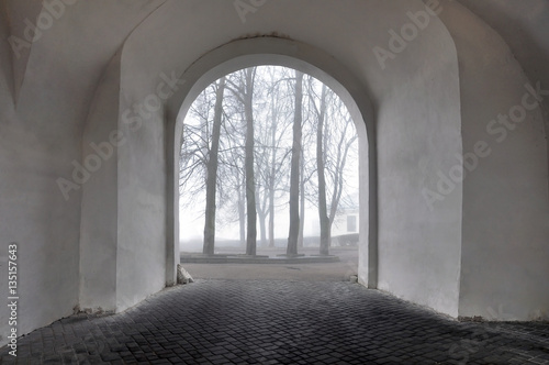 Arch of the old castle on background of trees in the fog Fototapeta