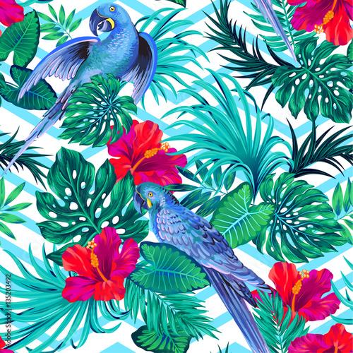 Materiał do szycia parrern wektor z papuga długoogonowa