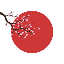 Branch Of Sakura Blossoms Against A Background Of The Sun. Spring Symbol Of Japan.