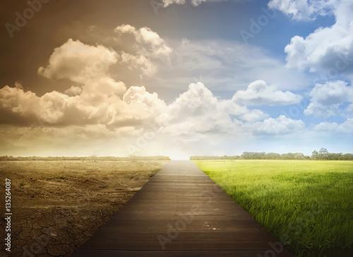 Zdjęcie XXL Krajobraz drewniana droga przemian z zmieniającym środowiskiem
