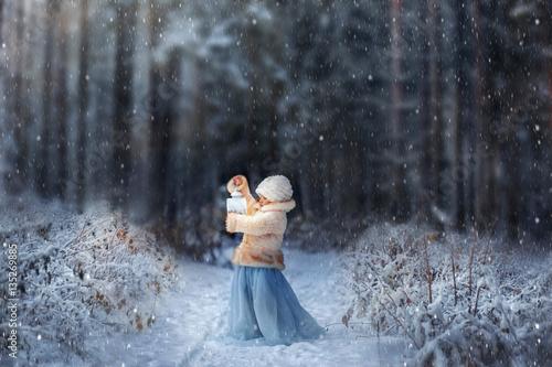 Valokuva  Winter fairytale