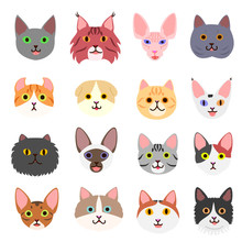 Cute Cats Faces Set