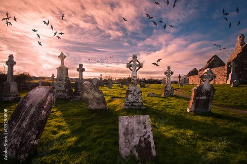 Historic cemetery in Clonmacnoise ,Ireland Fototapet