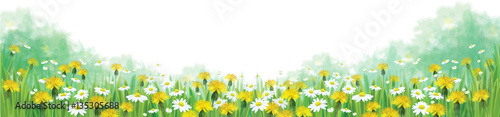 Wektorowy lata natury tło, chamomiles i dandelions pole
