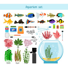 Aquarium Underwater Vector Elements, Corals And Stones Isolated On White Background