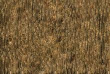 Illustration Wooden Peel Pattern Pine Bark Hardwood Dark Beige
