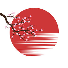 Cherry Blossoms On Sunset Background. Japan Sakura Spring. Vector Illustration On White Background.