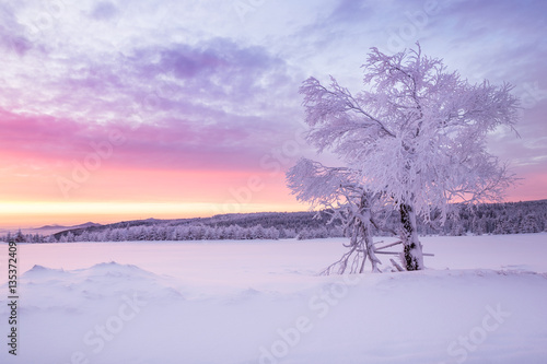 Tuinposter Purper Sunrise over a cold winter landscape with beautiful illuminated clouds