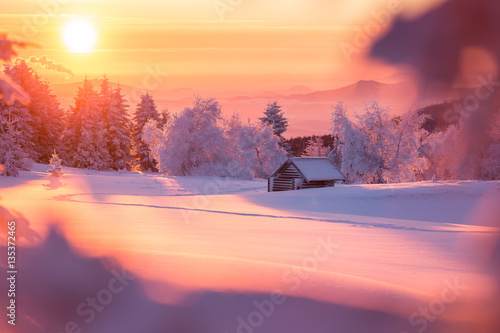 Poster Crimson Golden sunlight over a idyllic white winter landscape with a little wooden hut in background