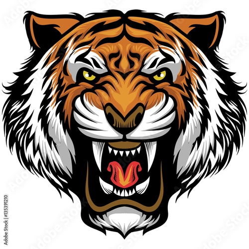 angry tiger face Wall mural