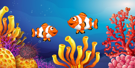 Fototapeta na wymiar Underwater scene with clownfish and sea urchin