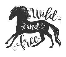 Vector Running Horse Silhouette With Text. Inspirational Design For Print, Banner, Poster. Wild And Free Galloping Horse