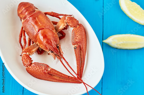Boiled lobster with lemon on a white plate Wallpaper Mural