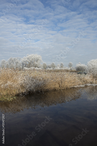 Foto op Aluminium Blauw Winterlandscape with frost at canal