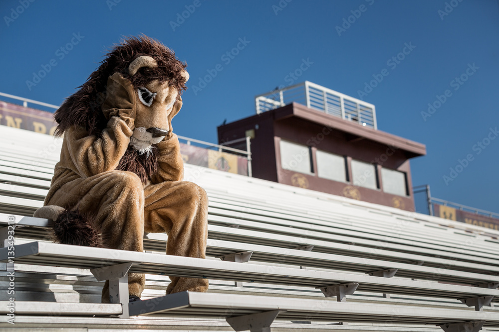 Fototapeta Sad and dejected sports team mascot laments the loss of the game.