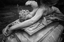 Statue Of A Weeping Angel Layi...