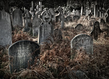 Spooky Overgrown Ancient Cemetery / Graveyard With Many Old Faded Headstones