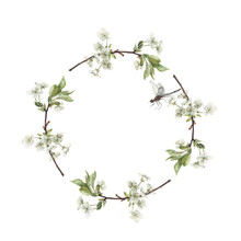 Watercolor Wreath Of Cherry Tree Branches With Dragonfy Isolated On White. Background For Invitation. Summer Illustration. Romantic Frame.