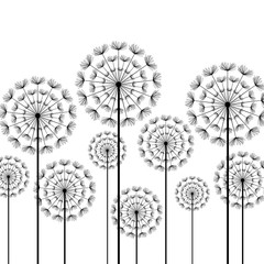 Panel Szklany Black stylized dandelions on white background