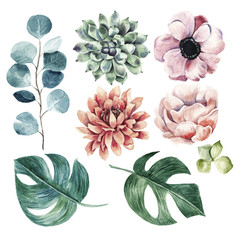 Naklejka Do salonu Big flower collection.Watercolor hand drawn illustration with plants