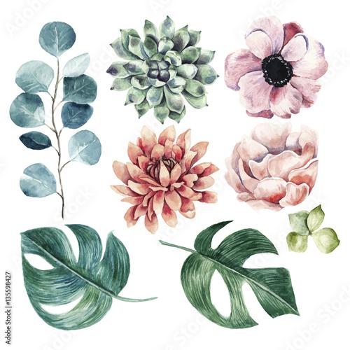 Kolekcja dużych kwiatów. Akwarela ilustracja z roślinami