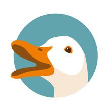Duck Head Vector Illustration ...