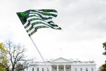 Marijuana Flag At White House