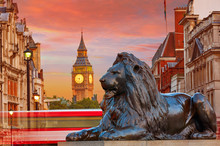 London Trafalgar Square Lion A...