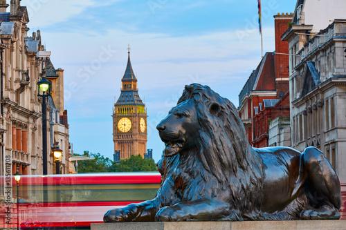 Fototapeta London Trafalgar Square lion and Big Ben