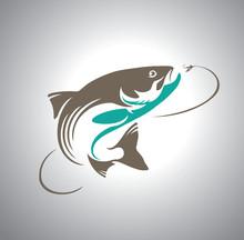 Fish Salmon