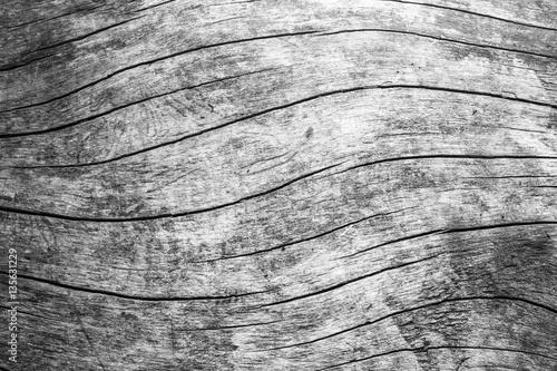 black and white wood grain texture Fototapete
