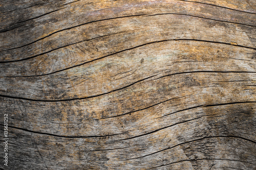 Natural wood grain texture image Canvas-taulu