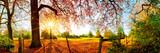 Fototapeta Fototapety na ścianę - Idyllische Landschaft im Herbst mit Wald, Wiese und Sonne