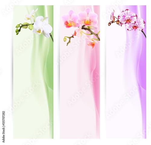 Poster Orchid Banner, Lesezeichen mit Orchideen