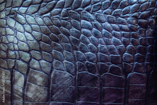 La pose en embrasure Crocodile Reptile leather texture