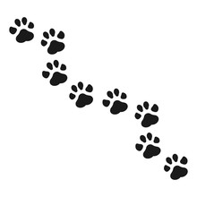 Paw Print Vector Illustration.