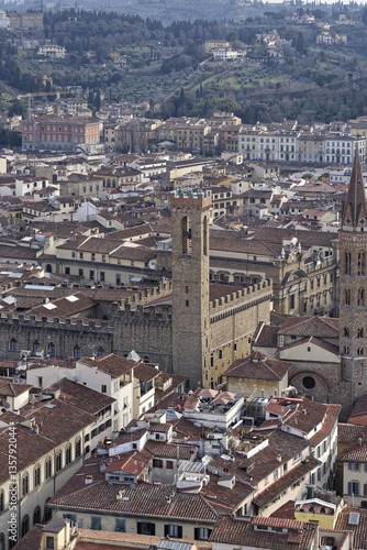 Garden Poster Madrid aerialview of florence