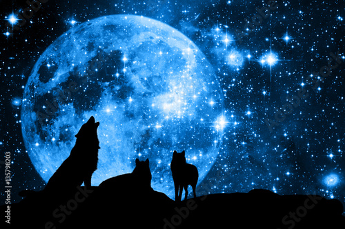 Photo Wolves and Moon like a concept for magic wolf pack