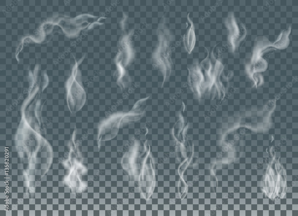 Fototapety, obrazy: Realistic cigarette smoke waves or steam on transparent background.