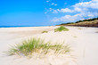 Green grass on white sand beach in Lubiatowo, Baltic Sea, Poland
