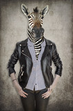 Zebra in clothes. Concept graphic in vintage style. - 135834894