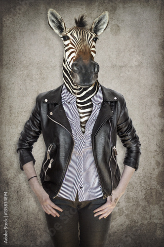 Garden Poster Hipster Animals Zebra in clothes. Concept graphic in vintage style.