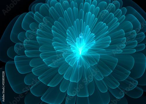 Fotografie, Obraz  Wide Shining Flower   Background - Fractal Art -   3D image