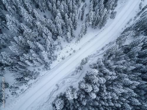 Poster Luchtfoto bird's eye, aerial view of forest covered with snow .