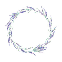 Watercolor Lavender Wreath. Hand Drawn Field Flowers Frame Isolated On White Background. Floral Design