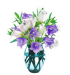 Bell Flowers in Vase isolated on white