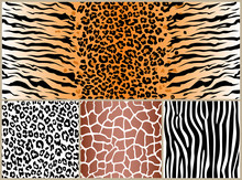 Set Safari Jungle Animal Fur S...