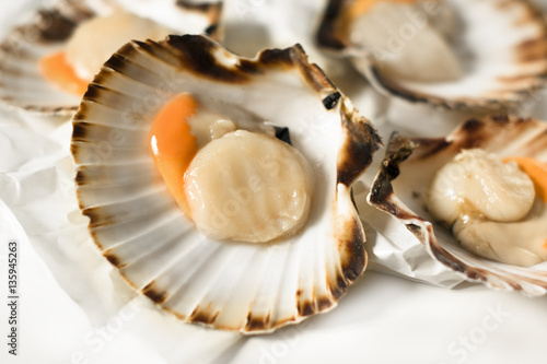Stampa su Tela Fish market. Delicacies. Fresh scallops on a white background